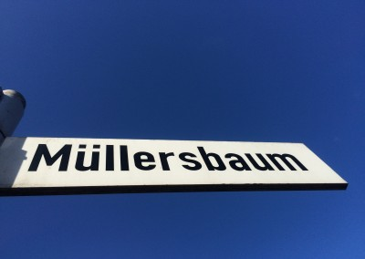 Müllersbaum in Burscheid-Hilgen